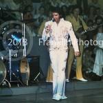 8632 Elvis in concert